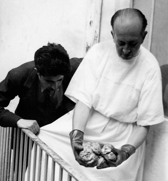Surgical Glove「Trotsky's Brain」:写真・画像(16)[壁紙.com]