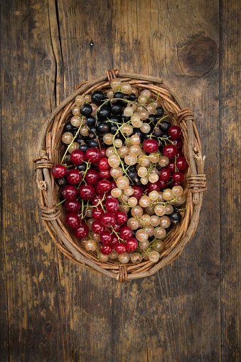 Black currant「Wickerbasket with mix of black, red and white currants」:スマホ壁紙(5)