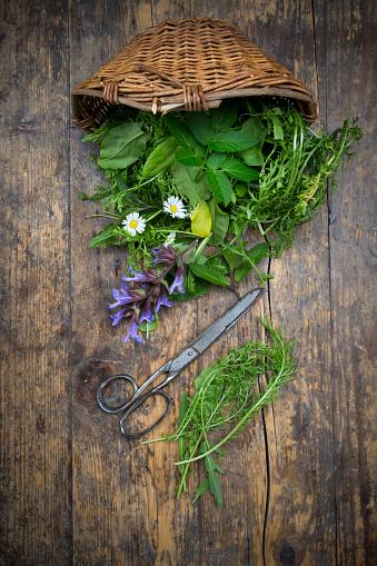 たんぽぽ「Wickerbasket of different wild herbs and edible flowers」:スマホ壁紙(8)