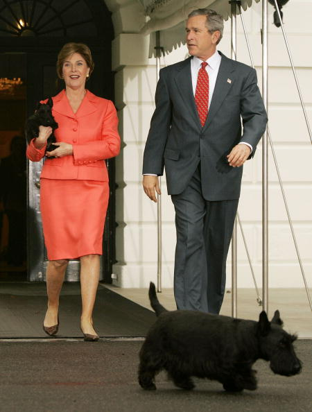 Showing Off「President And Mrs. Bush Show Off New Puppy」:写真・画像(9)[壁紙.com]