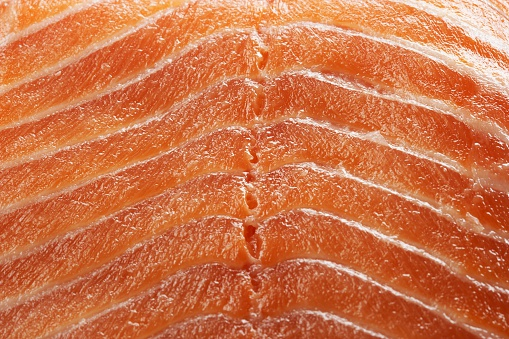 Carefree「Salmon」:スマホ壁紙(1)