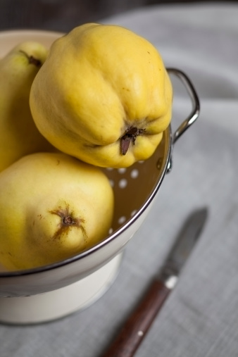 カリン「Three quinces in enamel colander, studio shot」:スマホ壁紙(3)