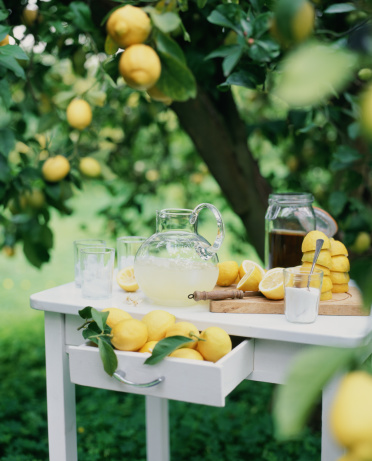 1990-1999「Freshly-squeezed lemonade.」:スマホ壁紙(13)