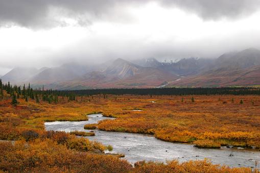 Alaska Range「Silver stream deep in Alaskan tundra」:スマホ壁紙(15)