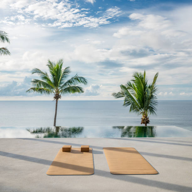 Yoga Exercise Background, Palm Tree, Sunrise, Tropical:スマホ壁紙(壁紙.com)