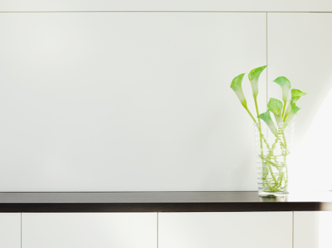 Calabasas「Modern cabinet with flower arrangement」:スマホ壁紙(19)