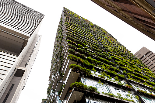 Planting「Low angle view of appartment building with vertical garden, background with copy space」:スマホ壁紙(16)