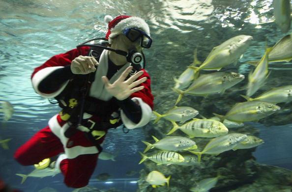 Chung Sung-Jun「South Korean's Celebrate Christmas In Seoul」:写真・画像(11)[壁紙.com]
