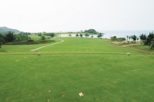 Sand Trap「Fairway on coastal golf course」:スマホ壁紙(8)