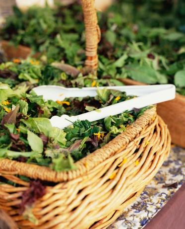 Arugula「Basket of mixed salad greens」:スマホ壁紙(10)