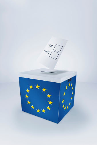 Election「Voting in/out at EU Ballot Box」:スマホ壁紙(17)