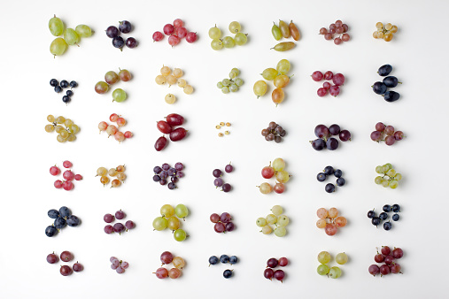 Grape「Colored grapes grid」:スマホ壁紙(15)