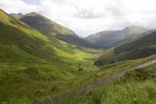 Valley「Argyll Forest Park」:スマホ壁紙(3)