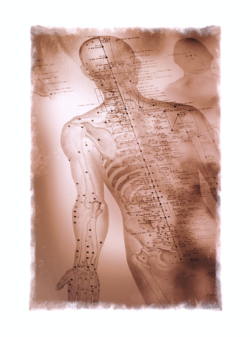 Sepia Toned「Acupuncture Chart」:スマホ壁紙(1)