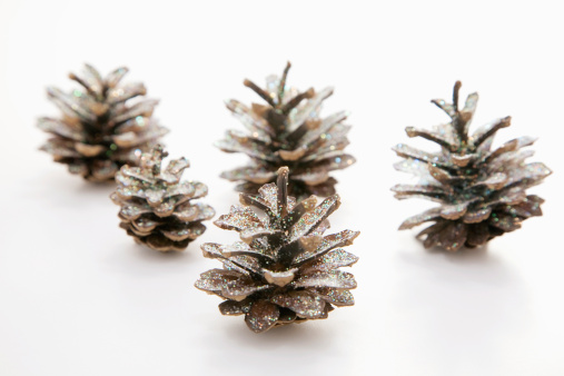 Pine Cone「Fir cones, close-up」:スマホ壁紙(17)