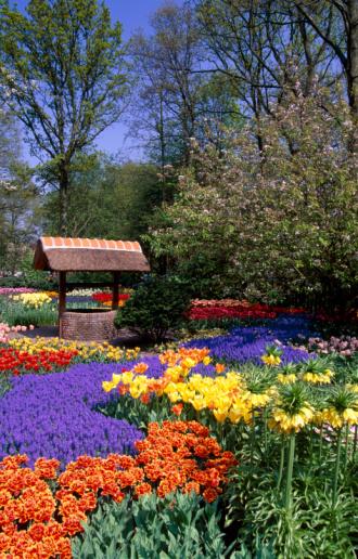 Keukenhof Gardens「Garden in Keukenhof, Holland」:スマホ壁紙(10)