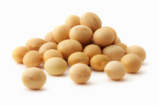 Soybean「Small pile of soya beans on white background」:スマホ壁紙(17)