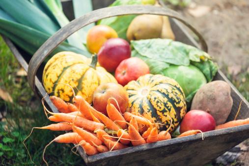 秋「た木製バスケット、新鮮なオーガニックの野菜」:スマホ壁紙(12)