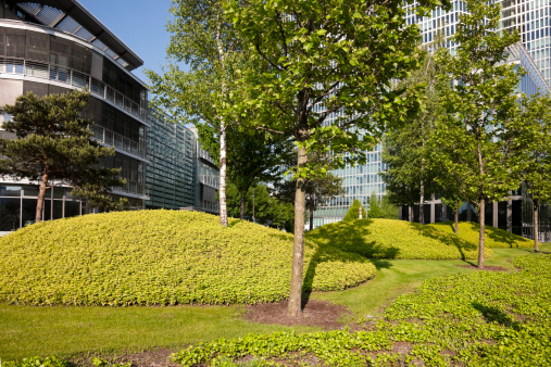 National Recreation Area「Recreation Zone in Front of Modern Glass Office Building」:スマホ壁紙(15)