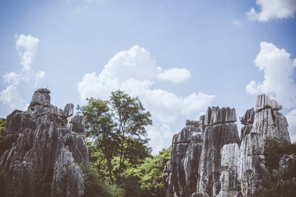 Stone forest in Kunming, China:スマホ壁紙(壁紙.com)