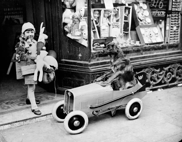 A Dog Goes Shopping:ニュース(壁紙.com)