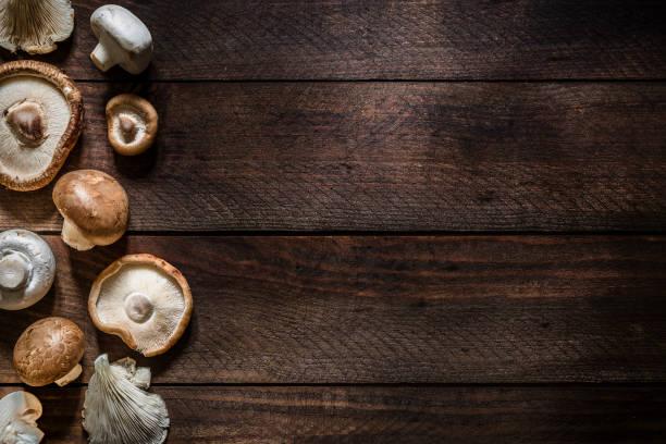Various kinds of edible mushrooms with copy space:スマホ壁紙(壁紙.com)