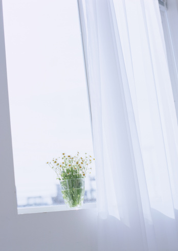 Window「Flower on windowsill」:スマホ壁紙(5)