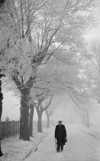 Frosty Morning:ニュース(壁紙.com)