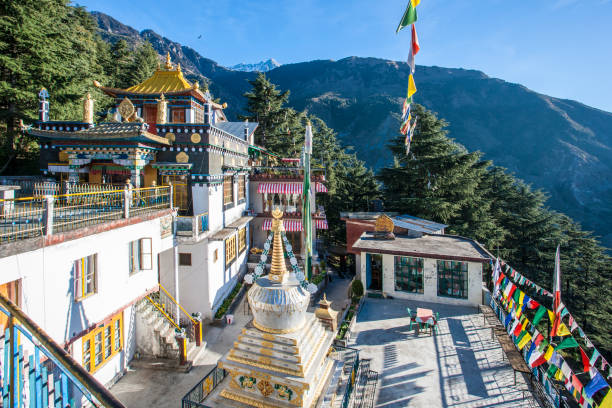 Zilnon Kagyeling Nyingma Monastery, McLeod Ganj, India.:スマホ壁紙(壁紙.com)