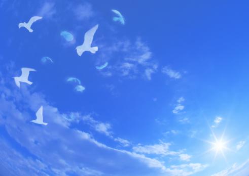 Image processing filter「Birds flying against blue sky」:スマホ壁紙(13)