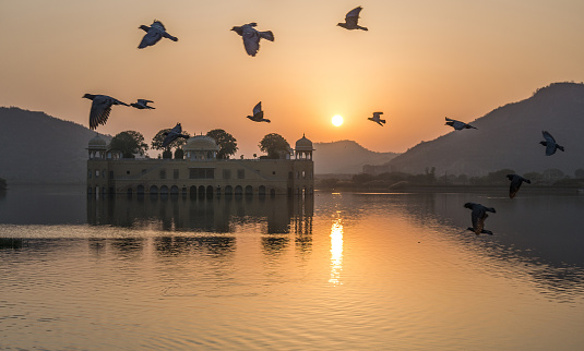 Rajasthan「Birds flying over Jal Mahal Palace at sunrise, Jaipur, Rajasthan, India」:スマホ壁紙(13)