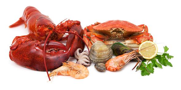 Mollusk「Seafood variety」:スマホ壁紙(5)