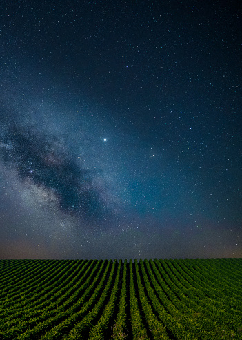 Bulgaria「Blue clear Night over the vineyards.」:スマホ壁紙(10)
