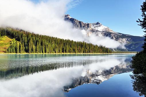 Yoho National Park「Foggy Emerald Lake,Yoho National Park, Canada」:スマホ壁紙(4)