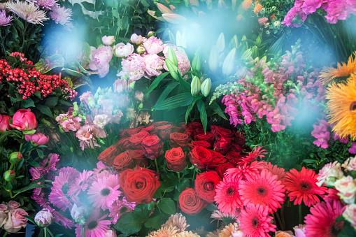 Flower Shop「High Street Florist」:スマホ壁紙(10)