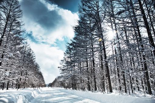 Hokkaido「Frozen road, Biei Hokaido, Japan」:スマホ壁紙(5)