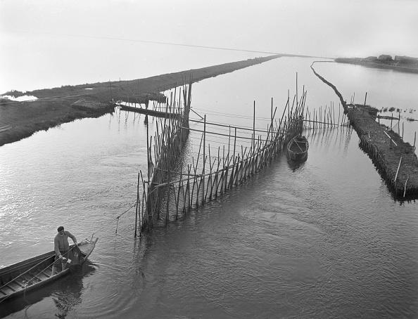 Fisherman「'Fisherman In A Lagoon'」:写真・画像(9)[壁紙.com]