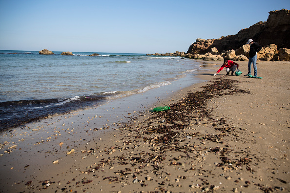 Israel「Cleanup Effort After Suspected Oil Spill Off Israel's Coast」:写真・画像(13)[壁紙.com]