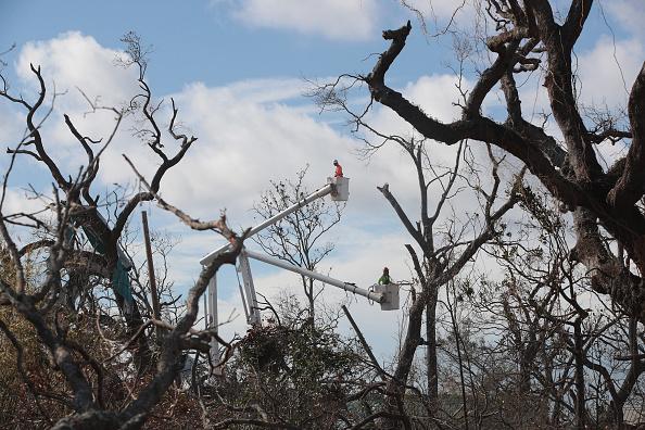 Scott Olson「Recovery Efforts Continue In Hurricane-Ravaged Florida Panhandle」:写真・画像(10)[壁紙.com]