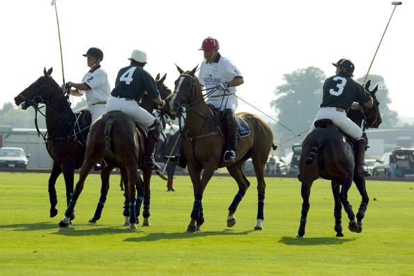 Horse「Polo Match」:写真・画像(6)[壁紙.com]