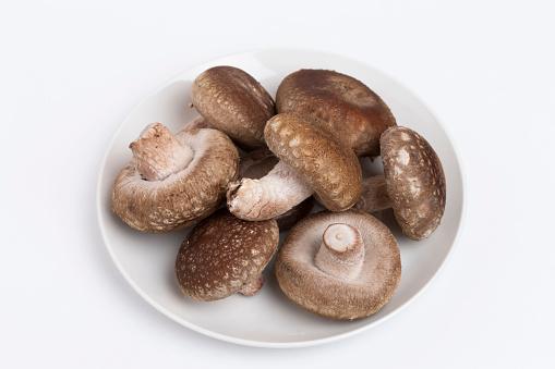 Tochigi Prefecture「Shiitake mushrooms on plate」:スマホ壁紙(19)