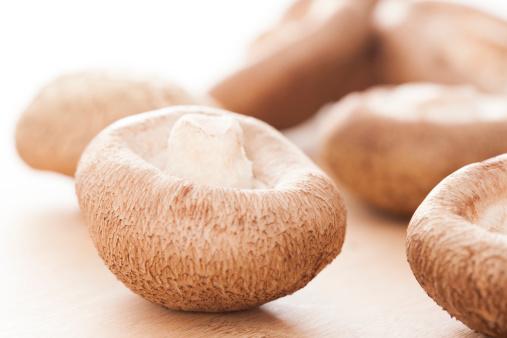 シイタケ「Shiitake Mushrooms」:スマホ壁紙(1)
