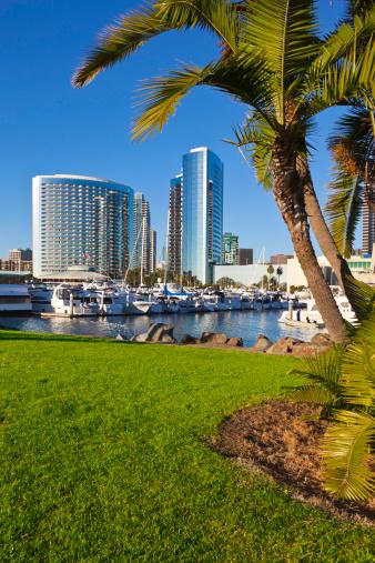 San Diego「The San Diego Skyline in California」:スマホ壁紙(15)