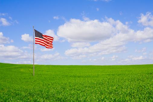 Fourth of July「Freedom Field」:スマホ壁紙(9)