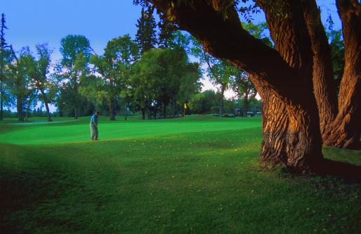Putting - Golf「Golfer on the green」:スマホ壁紙(12)