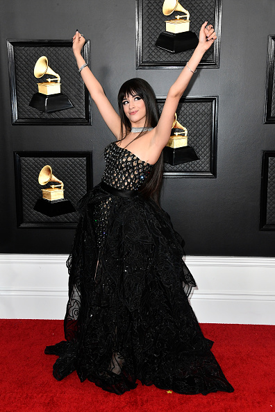 Versace Dress「62nd Annual GRAMMY Awards – Arrivals」:写真・画像(1)[壁紙.com]