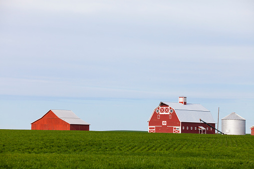 Agricultural Building「Farm with red barns and field, Palouse, Washington State, USA」:スマホ壁紙(9)