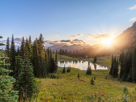 National Park「MT.Rainier in sunset」:スマホ壁紙(6)