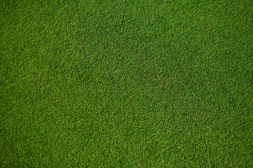 Golf「Real Putting Green」:スマホ壁紙(18)