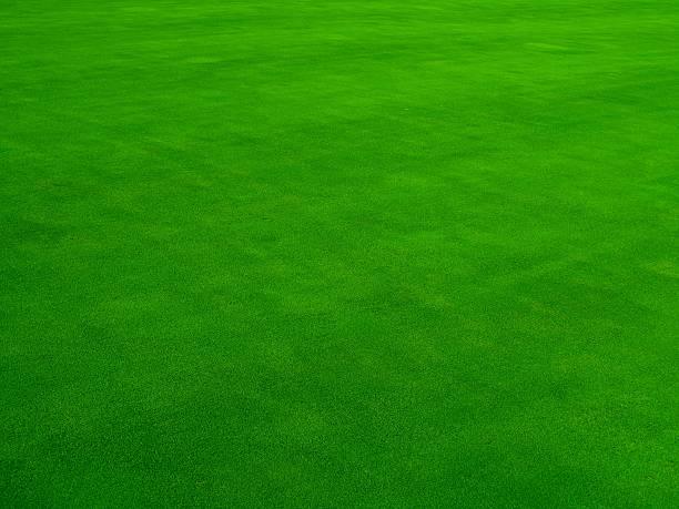 Real Putting Green:スマホ壁紙(壁紙.com)